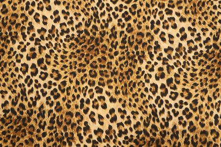 vilda djur mönster bakgrund eller textur Stockfoto