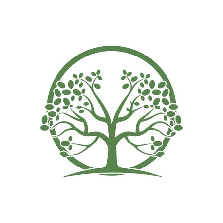 hand drawn illustration of Olive tree design template