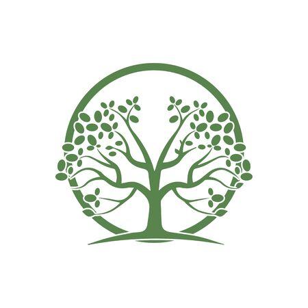 hand drawn illustration of  Olive tree design template Ilustração