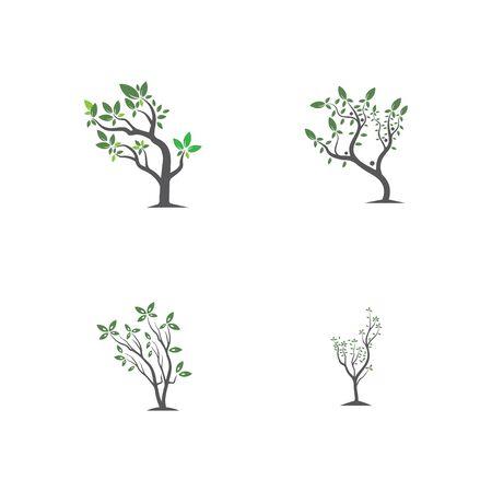 Tree, hand drawn, illustration of Olive tree design template