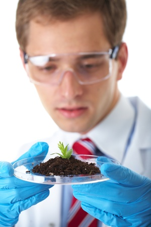young lab assistant holds small flat dish with soil and plant, wears blue protective gloves, isolated on white photo