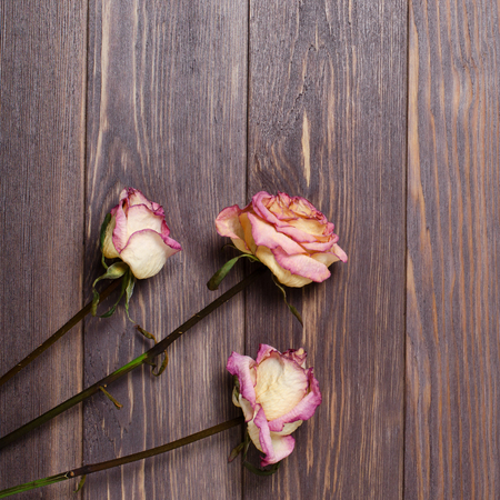 Dry roses on wooden background. Flat top view