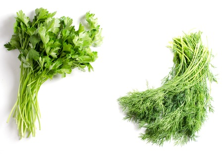 Bunch of dill and a bunch of parsley on a white background. Space for text. Flat top view