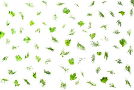 Pattern on a white background with dill, parsley. Top view