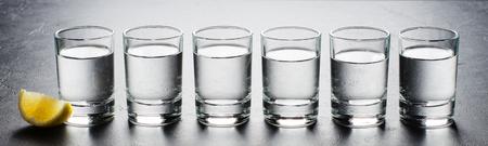 Vodka in glass glasses. Piece of lemon. Horizontal photo