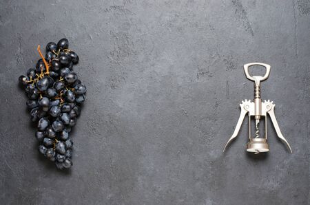 Bunch of black grapes and a corkscrew. The concept of winemaking. Copy space 스톡 콘텐츠