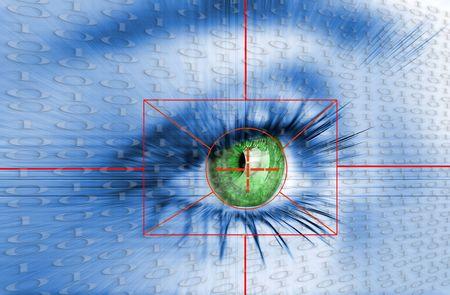 Eye system security identification.