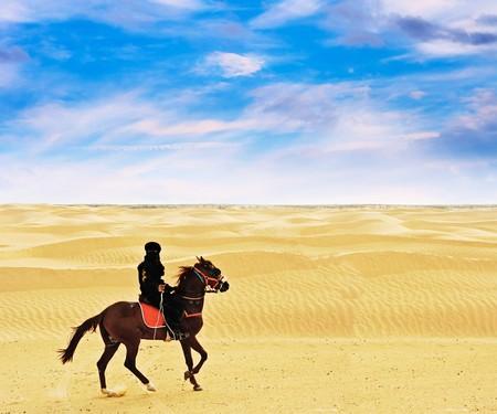 Bedouin on horse Standard-Bild