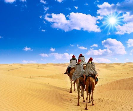 sahara: Camel caravan going through desert.