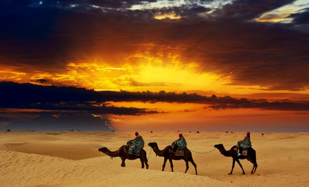 arabic desert: Camel caravan going through desert at sunset. Stock Photo