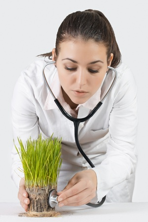 Female doctor with a stethoscope checked green plant. Stock Photo - 8658444