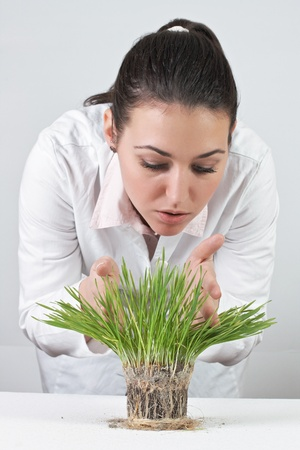 Female doctor checked green plant. photo