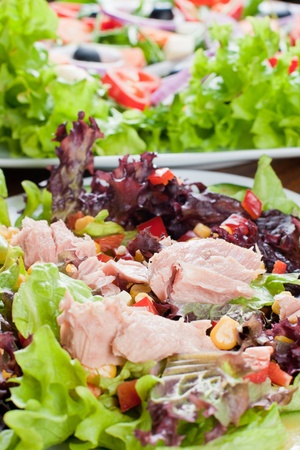 plato de ensalada: Sana ensalada fresca con at�n.