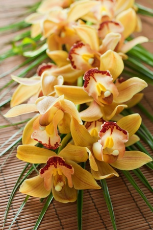 Yellow orchid with green decoration over bamboo background. photo