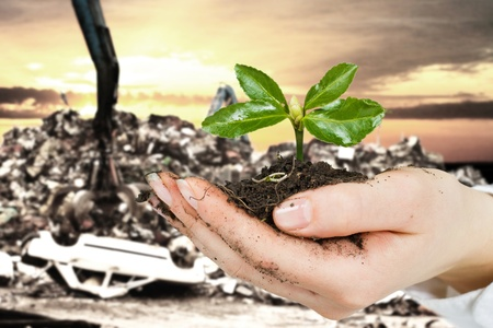 Ecology concept by small plant in hand with car dump in background.