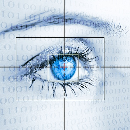 detect: Eye system security identification.
