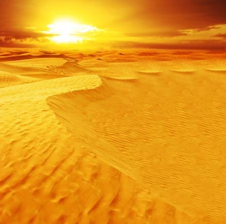 arabic desert: Landscape of desert dune in Sahara. Stock Photo