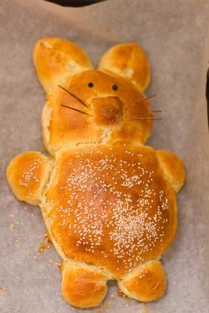 Easter Bunny bread homemade freshly baked. photo