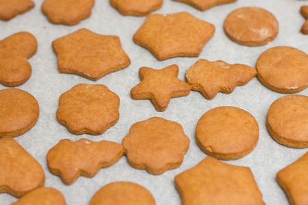 gingerbread cookies: Fresh Baked Gingerbread Cookies ready for decoration.