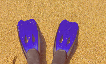 fins: Summer ,Vacation ,Travel ,Holiday accessories for snorkeling fins on the beach.