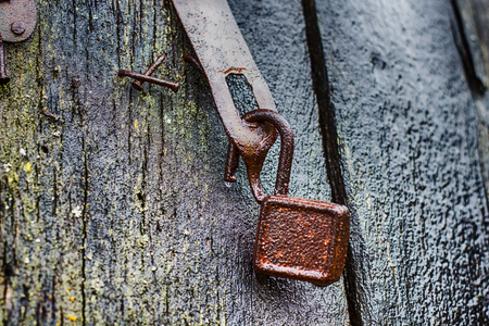 corrode: Rusty Padlock Open, on old wooden door. Stock Photo
