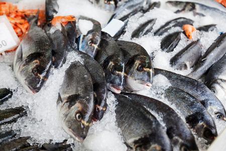 Fresh Sea fish bream on ice at fish market.