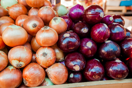 spiciness: Fresh onion healthy vegetable on farmers market.