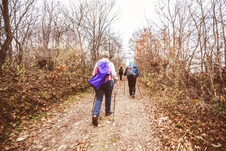 Hiking, Travel, Healthy Lifestyle, Group of active people trekking through autumn forest