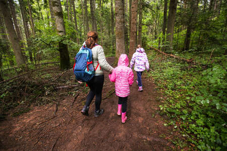 Family Adventure In Beautiful Summer Forest, Healthy Active Lifestyle Stockfoto