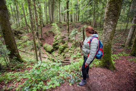 Hiker Woman With Backpack In the Forest Enjoying  Nature