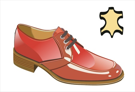 Men s shoes Vector