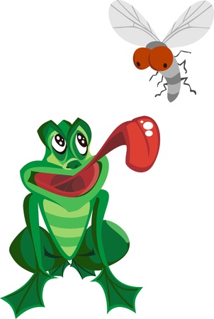 Frog Catching Bug   Vector