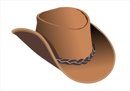 brown leather hat: cowboy hat