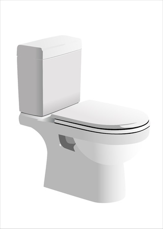 Toilet in the bathroom Vector