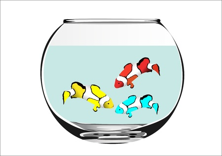 fish in aquarium on a white background Stock Vector - 14296790