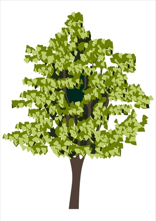 tree Stock Vector - 14296892
