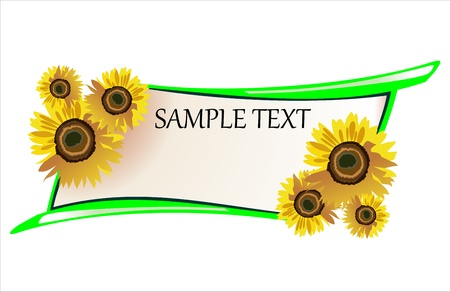 Vector sunflower  Vector