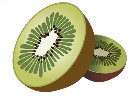 kiwi fruit isolated on white background Stock Vector - 14328122