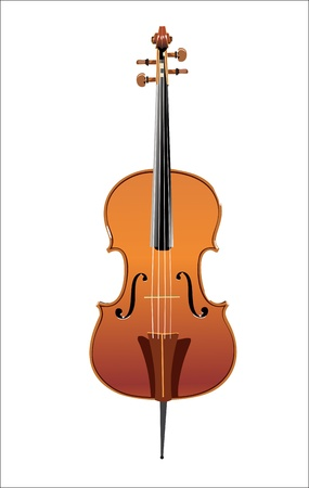 double bass isolated Vector