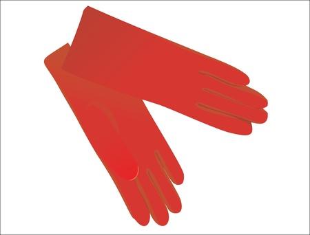 women gloves Vector