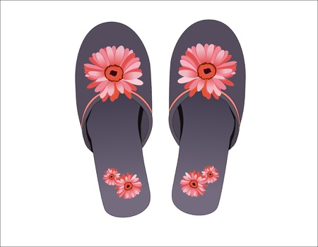 footware: Home slipper  Isolated over white background
