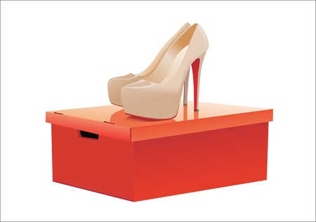 high heeled: Pair of female high-heeled shoes on box over white background Illustration