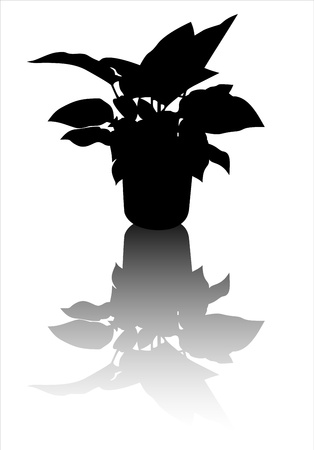 illustration with wild flowers silhouettes isolated on white Stock Vector - 15993228
