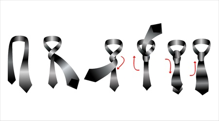 Tie and knot instructions, vector illustration Vector