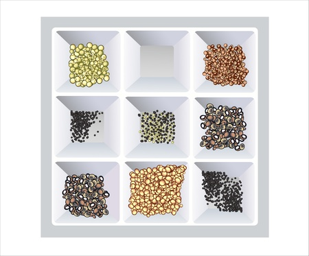 spices collection isolated on white background Stock Vector - 15993619