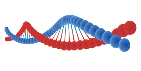 genetically: DNA