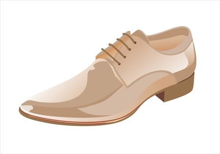 Elegant shiny dress shoes Vector