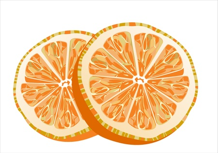 slice of orange isolated on white background Stock Vector - 16084709