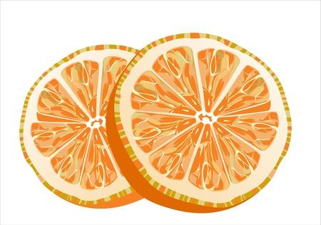 slice of orange isolated on white background Stock Vector - 16084709