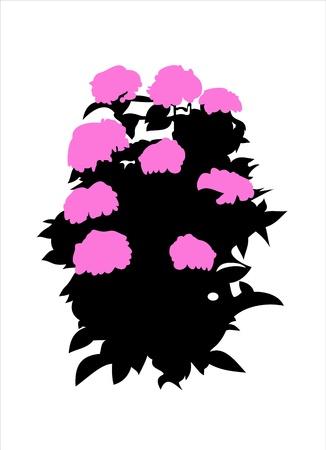 Flower  silhouette  Stock Vector - 16084649